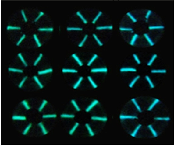 Light emitted from sensor proteins turned bluer when samples contained higher concentrations of antibodies against three viruses.  Credit: Adapted from ACS Sensors 2020